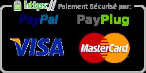 paypal payplug